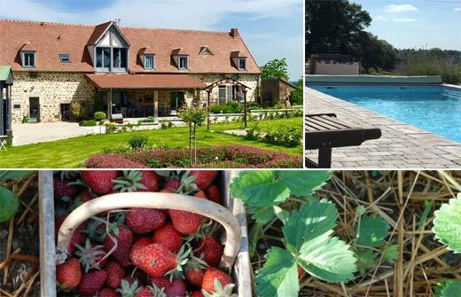 Beste Bed and Breakfast - Frankrijk - Auvergne-Rhône-Alpes - Allier - Beaune d'Allier - Shenmen - compositie