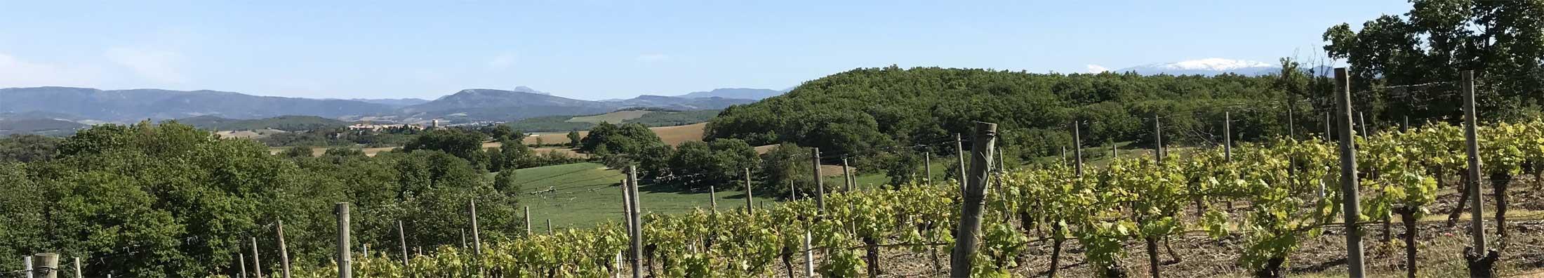 Beste Bed and Breakfast - Frankrijk - Tarn-et-Garonne - Castelsarrasin - Belvèze - La Mouline - topfoto