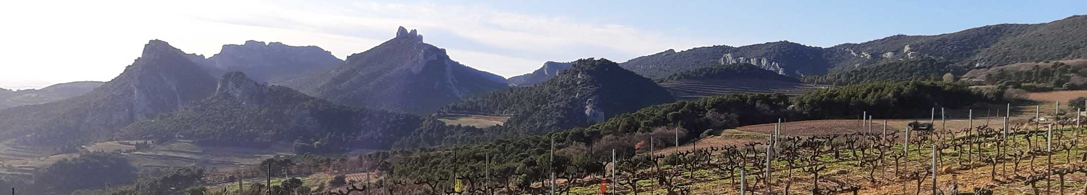Beste Bed and Breakfast - Frankrijk - Provence-Alpes-Côte d'Azur - Vaucluse - Mazan - Le Mas de Canteperdrix - topfoto