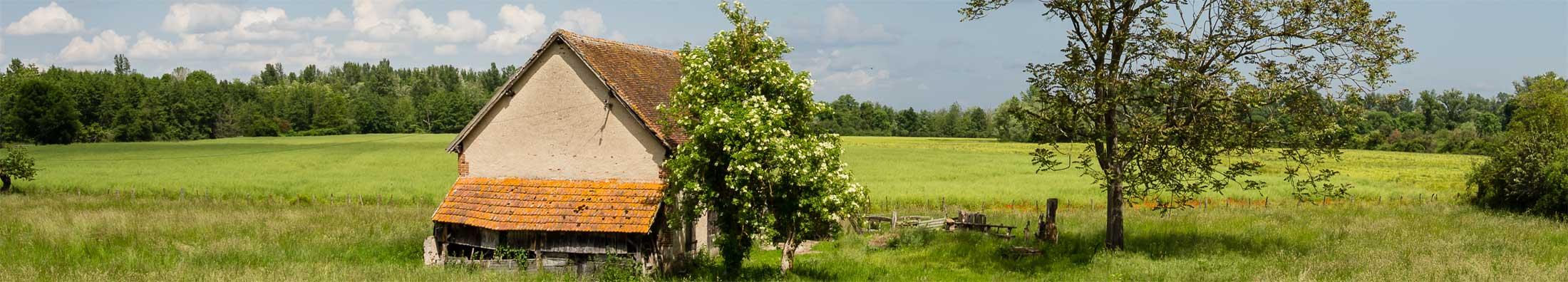 Beste Bed and Breakfast - Frankrijk - Auvergne-Rhône-Alpes - Allier - Beaune d'Allier - Shenmen - topfoto