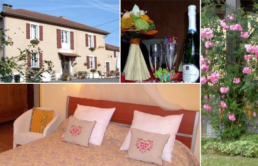 Beste Bed and Breakfast - Frankrijk - Occitanië - Midi-Pyrénées - Montbernard - Au Palmier de Barran - compositie